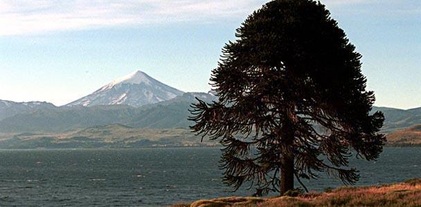Junín de los Andes - vacaciones