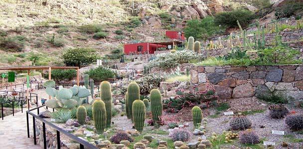 museo botanico y arqueologico chirau mita - paseo