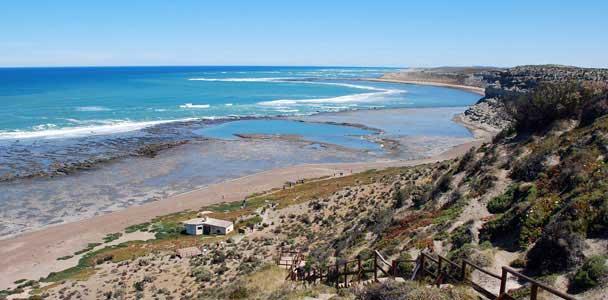 Península Valdés y Puerto Pirámides - destinos