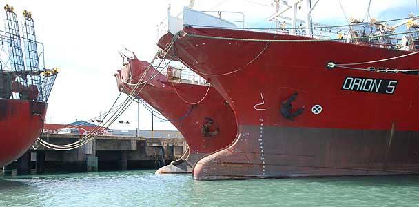 Puerto Deseado - viajes