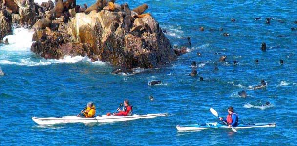 Puerto Deseado - atracciones