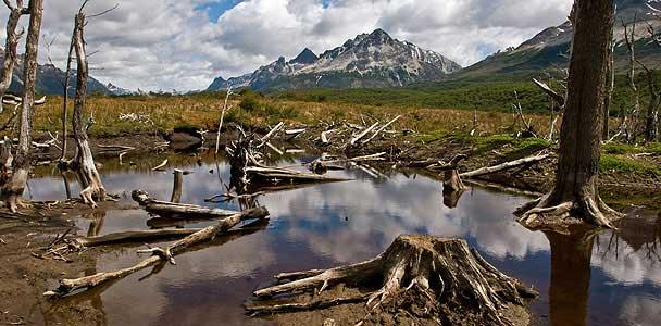 Ushuaia - viajes