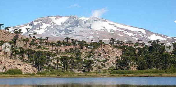 vista del volcan copahue - copahue